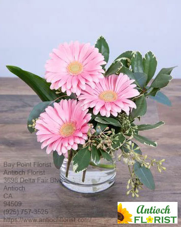 Florist Bay Point